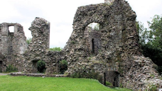 Narberth-Castle_Mauerdetails_0970