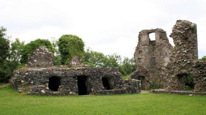 Narberth-Castle_Palasreste_0968