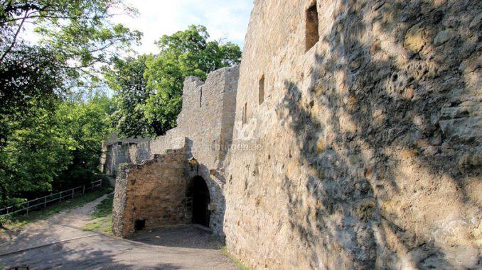 Burg-Greifenstein-07422_Schildwall_2393
