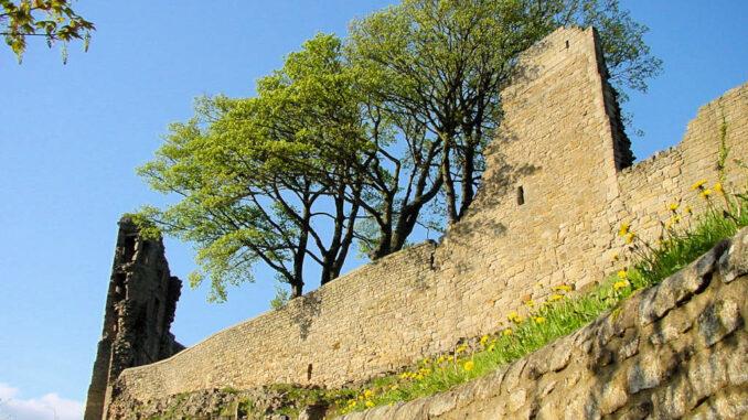 Barnard-Castle_0049_Mauerdetail-mit-Baeumen