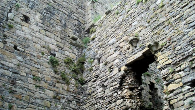 Beaumaris-Castle_Mauerdetail