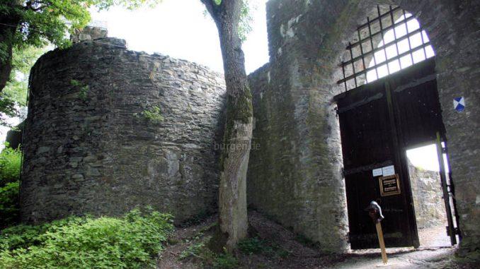 Burg-Falkenstein_Koenigstein_0066