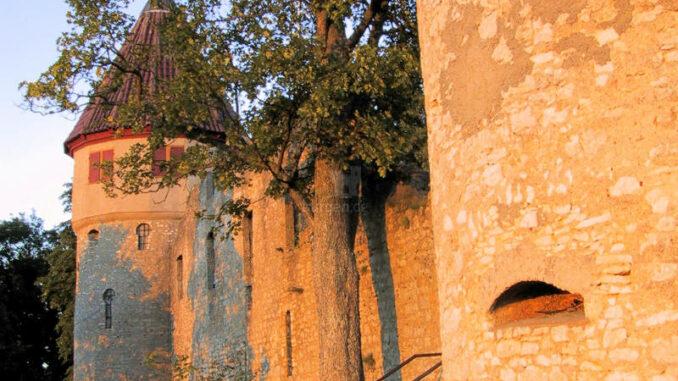 Burg-Honberg_Eingang-im-Sonnenschein