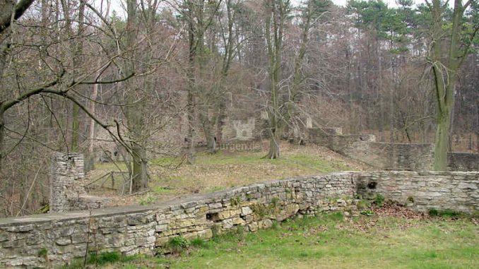 Burg-Plesse_Vorburg_0038