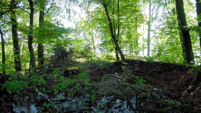 Burg-Sachsenstein_Mauerfragmente_0030