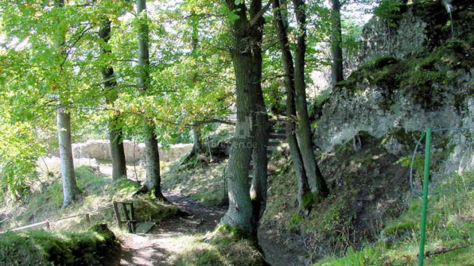 Burg-Scharzfels_Innenanlage_0014
