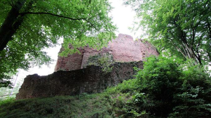 Burg-Wildenstein_4815_Palas