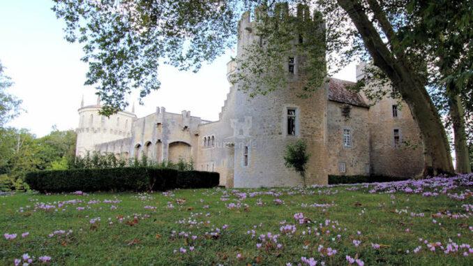 Chateau-Guillaume_6298_Rueckseite-mit-Bloemekens