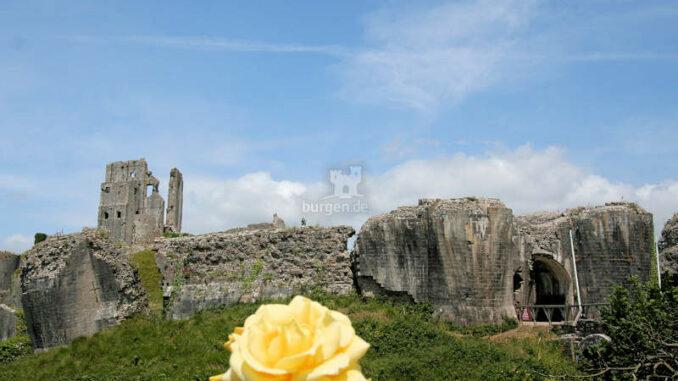 Corfe-Castle_1328_Vom-Cafe-aus
