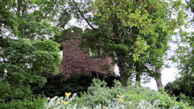 Dunster_0938_Turm