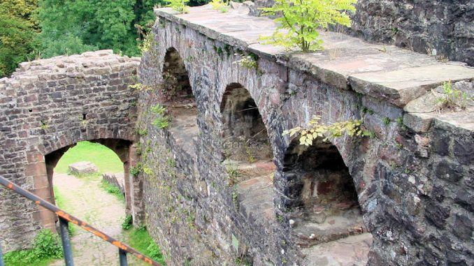 Hinterburg-Neckarsteinach_0072_Mauerdetails