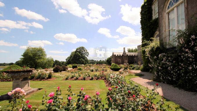 Powderham-Castle_1231_Rosengarten