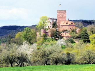 Burg Gamburg, Baden-Württemberg - Aussenansicht