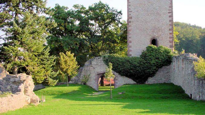 Burg-Greene_Innenhof_0046