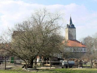 Burg Lutter am Barenberge, Niedersachsen - Seitenansicht