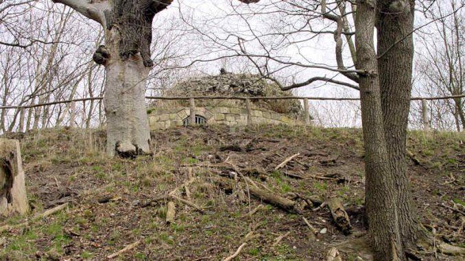 Burg-Anhalt_0016_Aufgang