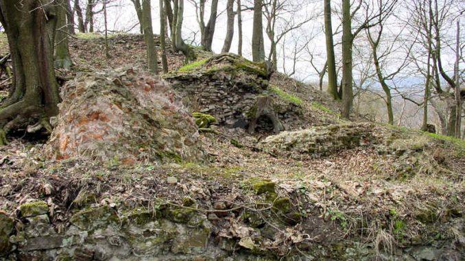 Burg-Anhalt_0018_Mauerfragmente
