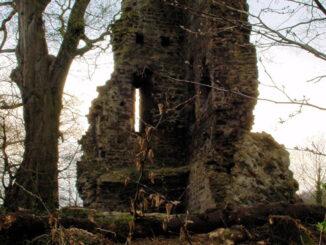 Kattenturm Luttelnau - Blair Witch Ambiente