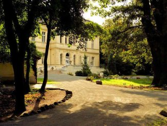 Schloss Schönfeld (Sachsen-Anhalt) - Blick auf den Eingang