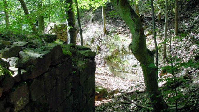 Burg-Hohenfels_Mauerfragmente_0098