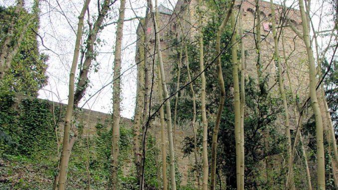 Schloss-Landsberg_Palas_0049