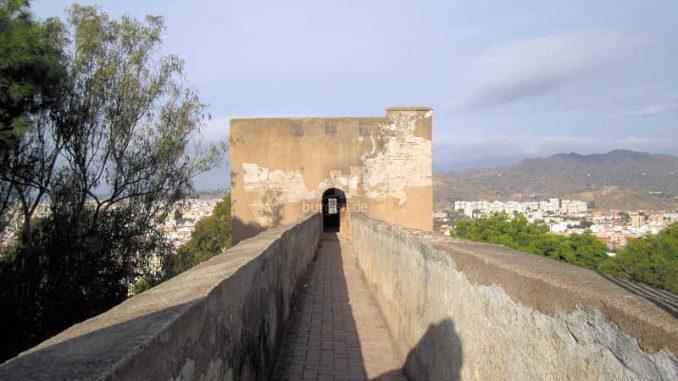 Malaga_Zinnen_1319