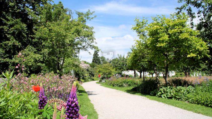 Schloss-Dachau_Weg-im-Park_5337