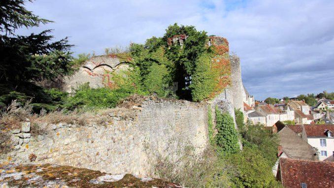 Chateau-Montresor_Mauerreste_5862