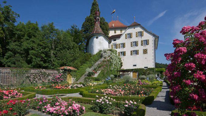 Schloss-Heidegg_Gartenblick_1583847949-200