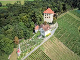 Luftbild © Schloss Heidegg