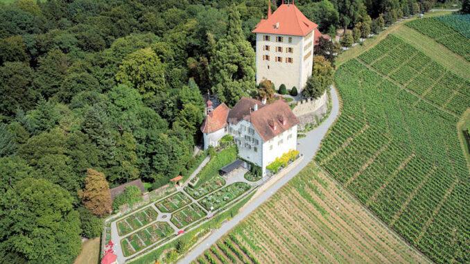 Schloss-Heidegg_Luftbild_1583847949