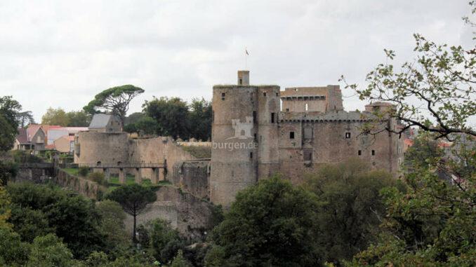 Chateau-de-Clisson_Panorama_8476