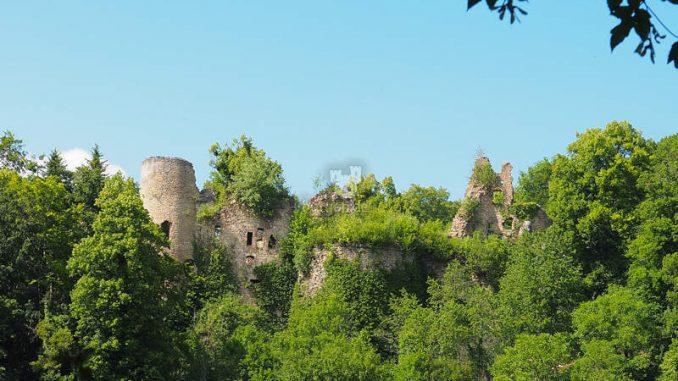 Chateau-de-Morimont_Blick-zur-Ruine-2_11062020-P6110961