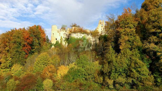 Chateau-de-Morimont_Blick-zur-Ruine_1450