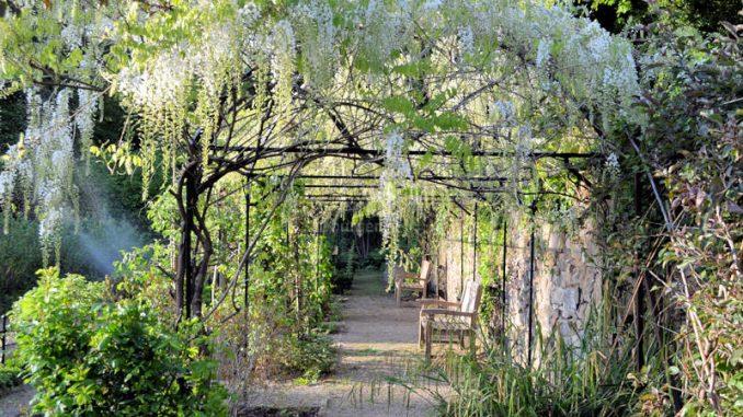 Schloss-Ippenburg_Mundraubgarten