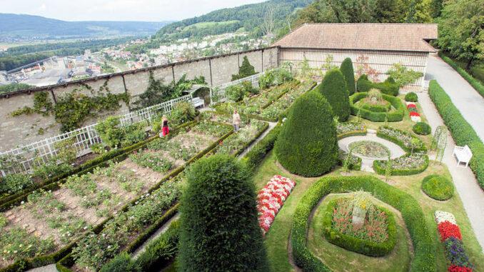 Schloss-Wildegg_Rosengarten