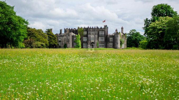 Birr-Castle_Flowering-Meadow