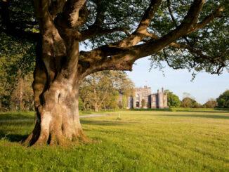 Wundervoller Blick aus dem Park © Birr Castle, Irland