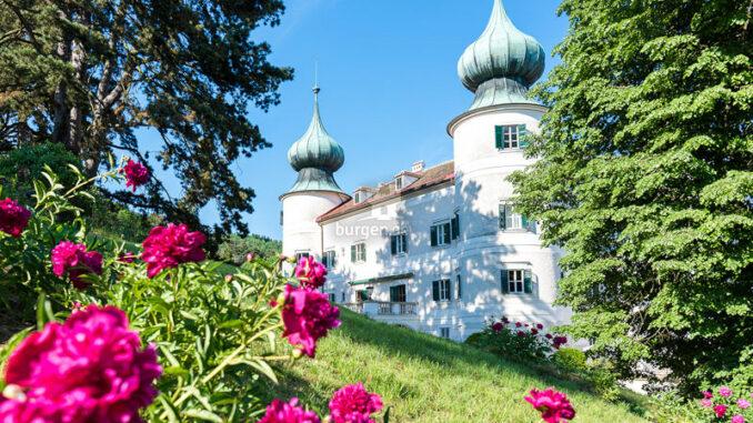 Schloss-Artstetten_Schloss-und-Pfingstrosen_c-David-Mayrhofer-Schloss-Artstetten_800