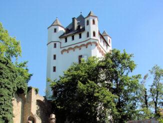 Burg Eltville am Rhein - Burg & Rosen © Bildarchiv Magistrat der Stadt Eltville am Rhein