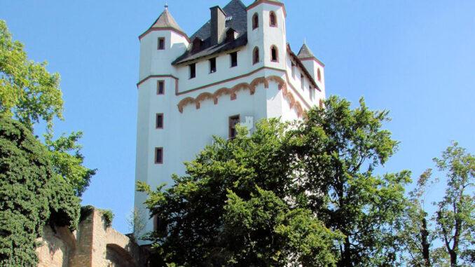 Burg-Eltville-am-Rhein_Burg-und-Rosen_c-Bildarchiv-Magistrat-der-Stadt-Eltville-am-Rhein_800