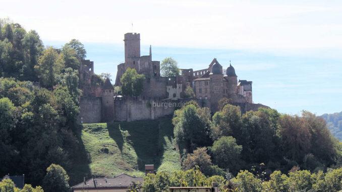 Burg-Wertheim_Burgpanorama