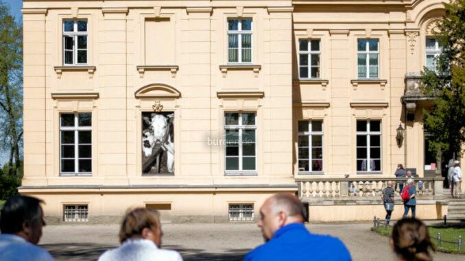 Oderbruch-Museum-Altranft_Fassade-mit-Kuh_c_Oderbruch-Museum-Altranft-Alex-Schirmer_800