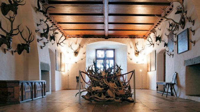 Schloss-Waldburg_Rund-um-die-Jagd_c-Schloss-Waldburg_800