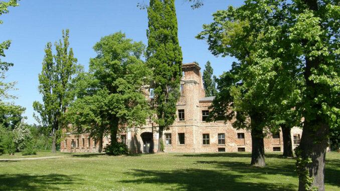 Schlossruine-Dahme-Mark_Schlossruine-im-Sonnenschein_c-Schlossruine-Dahme-Mark_800