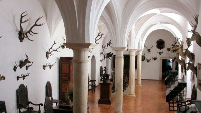 Paco-Ducal-de-Vila-Vicosa_ Jagdmuseum_Paco-Ducal-de-Vila-Vicosa_800